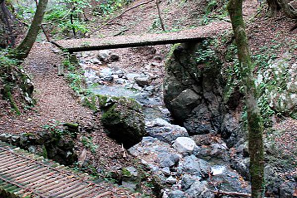 天滝への登山道