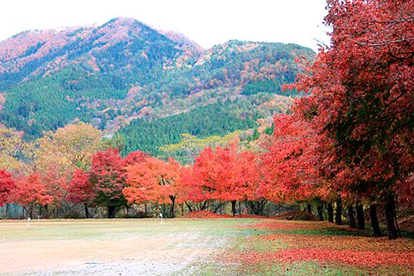 御殿山公園(11月撮影)